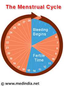Ovulation Calculator / Ovulation Calendar / Ovulation Chart