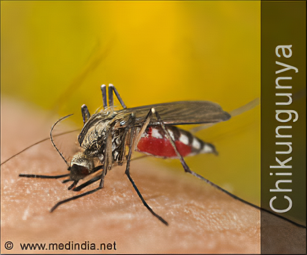 Quiz on Chikungunya