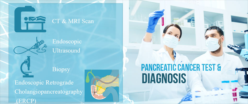 Pancreatic Cancer - All the Disease, its Diagnosis and