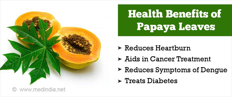 Health Benefits of Papaya Leaves
