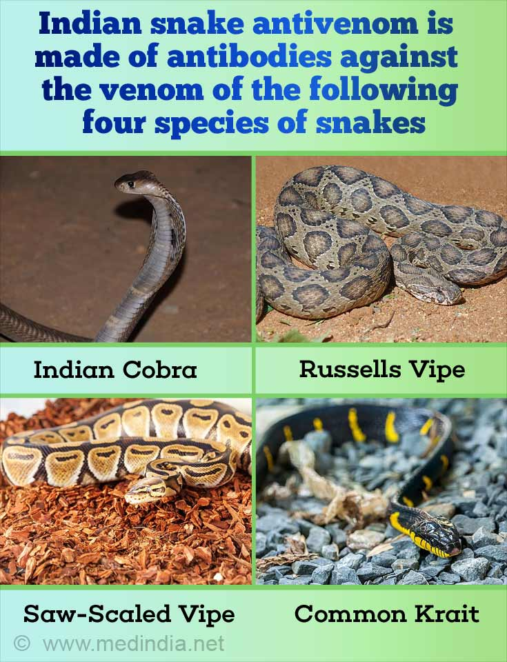 Indian Snake Antivenom - An Overview