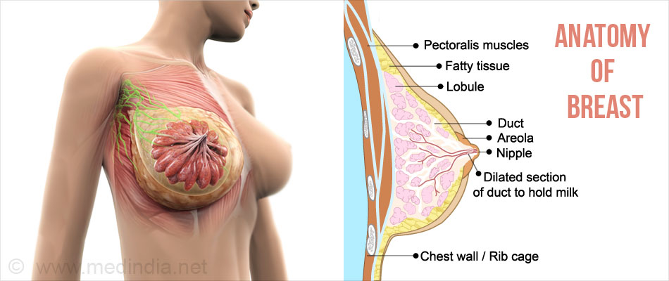 Chest wall pain, costochondritis